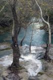 Kursunlu December 2013 3098.jpg