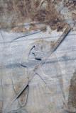 Canakkale Polyxena Sarcophagus Poliksena Lahiti May 2014 8044.jpg