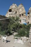 Cappadocia Urgup september 2014 0806.jpg