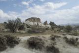 Cappadocia fox country Urgup september 2014 1755.jpg
