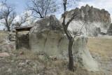 Cappadocia fox country Urgup september 2014 1757.jpg