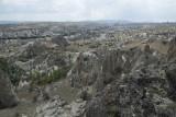Cappadocia fox country Urgup september 2014 1771.jpg