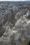 Cappadocia fox country Urgup september 2014 1776.jpg