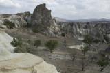 Cappadocia fox country Urgup september 2014 1783.jpg