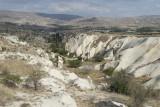 Cappadocia fox country Urgup september 2014 1784.jpg