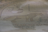 Gaziantep Zeugma Museum september 2014 2785.jpg