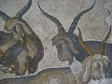 1091 Istanbul Mosaic Museum dec 2003