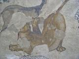 1102 Istanbul Mosaic Museum dec 2003