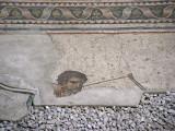 1103 Istanbul Mosaic Museum dec 2003