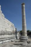 Didyma Apollo Temple October 2015 3299.jpg