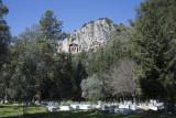 Dalyan Rock graves 2016 6670.jpg