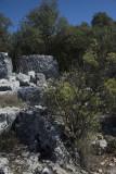 Cyaneae Acropolis October 2016 0198.jpg