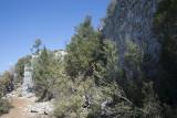 Cyaneae Acropolis area October 2016 0181.jpg