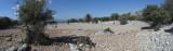 Cyaneae field near theatre October 2016 0119 panorama.jpg