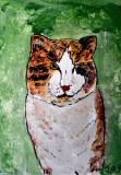 Grumpy Cat painting on board in acrylics SOLD