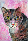 My Cat Dillain painted in Inktense pencils and Gellitos