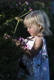 Maisie's Flower Garden