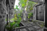 Mango Tree Private Entry