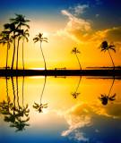 Paradise Reflected / 2013 Redo