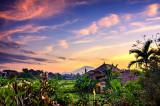 First light over Ubud