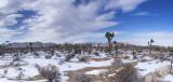 JT Snow Panorama 2
