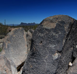 Petroglyphs in the Saguaro National Park