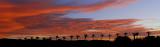 Desert Sunrise Pano