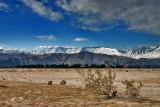 Winter Near Palm Springs