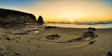 Coastal Dreams