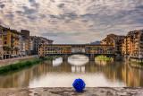 Ponte Vecchio & Blue Rose