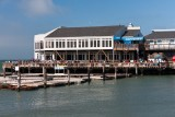 Pier 39 and Sea Lions