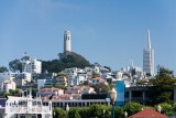Telegraph Hill with Coit Tower and Transamerica Pyramid