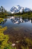 Picture Lake and Mount Shuksan