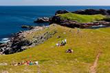 Picnics On The Cliff