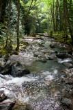Creek from Rainbow Falls