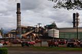 Hawaiian Commercial & Sugar Company