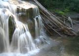 23 falling water fallen trees