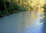 06 milky cispus river