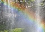59 narada rainbow
