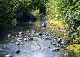51 stream by white river