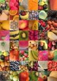 16 fruit quilt
