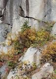 17 fall cliff