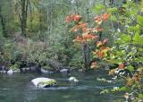 4 cedar river