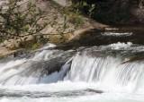 23 salmon rapids