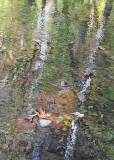 50 impressionist river