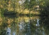 54 swan creek