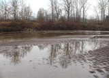 puyallup river january
