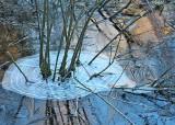 20 warm light icy pond