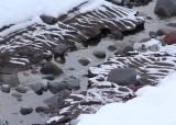 snow in valleys of rippled silt