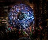 Longwood Nightscape